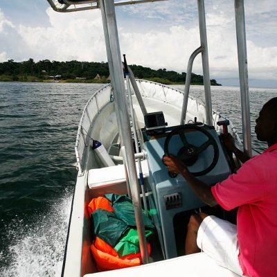 Ngamba Chimp Island